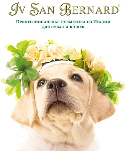 Косметика для собак bernard